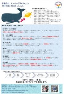 アンバーグリスジャパン資料1